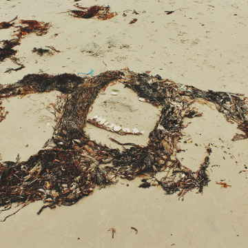 Face on Australian beach made with seaweed